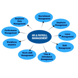 HR & Payroll Management, Systems, HR Management Services, Pune, India